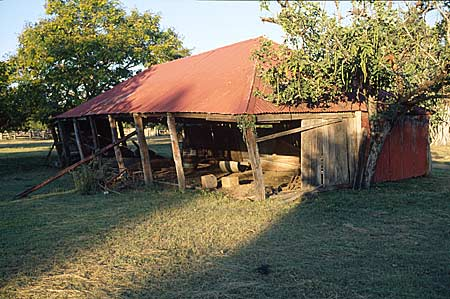 slab walled shed with leaning posts